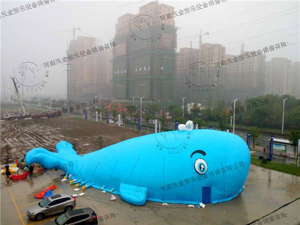 双节跟蓝鲸鱼海洋球乐园更般配